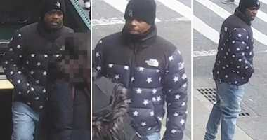 Lower East Side Vladeck Houses robbery suspect.