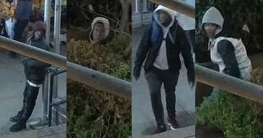 Suspects fruit stand robberies