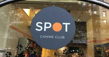 Spot Canine Club