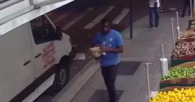 Dog thief in Williamsburg