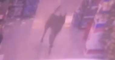 Dog chases customers through Newark store.