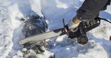 fallen tree limb snow