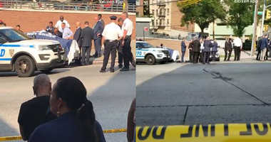 Infants found dead in Bronx