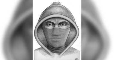 rape suspect sketch bronx