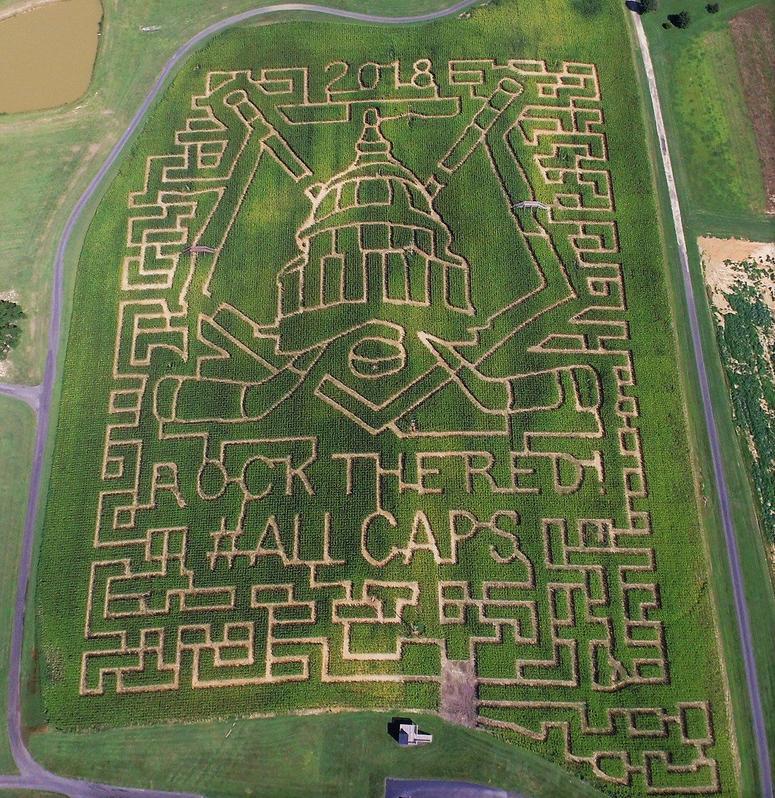 Bowles_Farms_Caps_Corn_Maze
