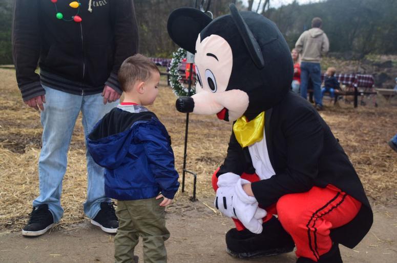 Disney World Increases Annual Passholder Price