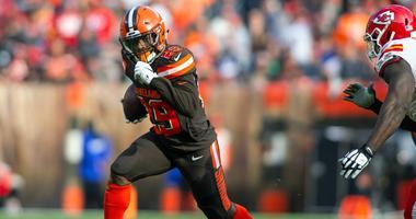 Cleveland Browns running back Duke Johnson (29)