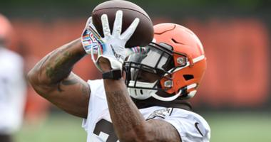 Jun 4, 2019; Berea, OH, USA; Cleveland Browns running back Duke Johnson (29) catches a pass during minicamp at the Cleveland Browns training facility. Mandatory Credit: Ken Blaze-USA TODAY Sports