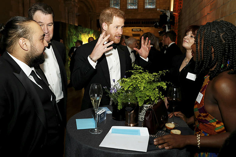 Netflix_Our_Planet_Prince_Harry
