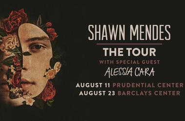Shawn Mendes Tour 2019 Barclays/Prudential