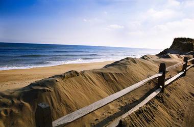 Cape Cod Dune