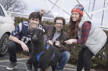 The TJ Show Goat