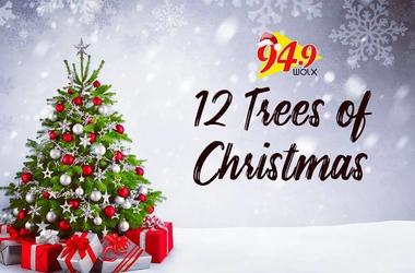 12 Trees of Christmas: Hear Why Angela Sweeny of Madison will be Receiving some Holiday Cheer from Jim & Teri