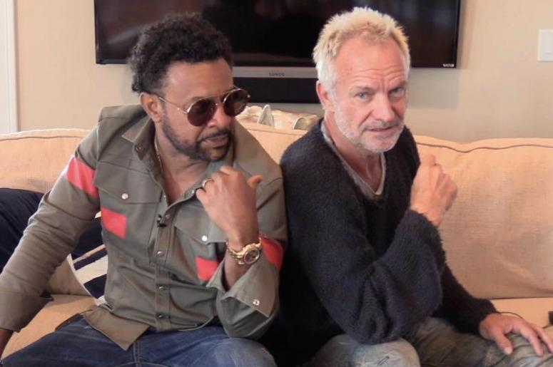 Shaggy And Sting