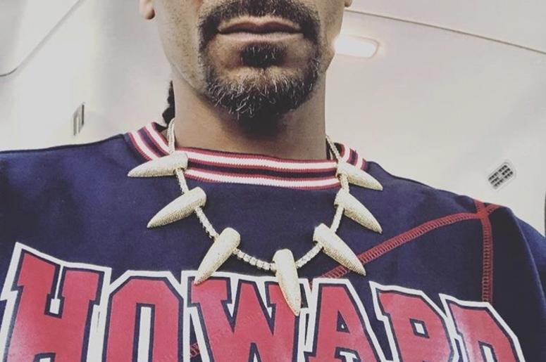 WATCH: Snoop Dogg Drives Thru D C  Sporting Howard U Sweater