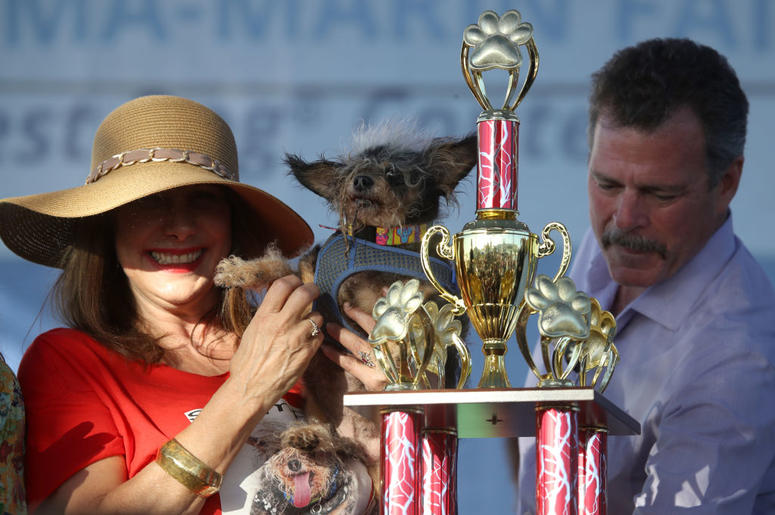 PETALUMA, CALIFORNIA - JUNE 21: Dalrene Wright (L) holds Scamp the Tramp after winning the World's Ugliest Dog contest at the Marin-Sonoma County Fair on June 21, 2019 in Petaluma, California. A dog named Scamp the Tramp from Santa Rosa, California won th