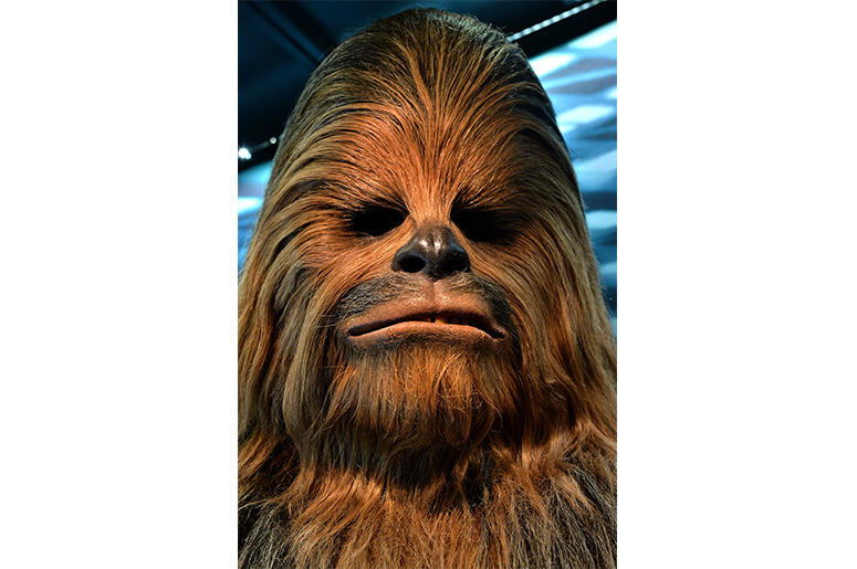 COLOGNE, GERMANY - MAY 20: The costume worn by Peter Mayhew as Chewbacca the Wookie is seen during the 'Star Wars Identities' Exhibtion Press Preview & VIP Opening at Odysseum on May 20, 2015 in Cologne, Germany. (Photo by Sascha Steinbach/Getty Images)
