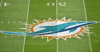 Miami Dolphins Begin OTA Practices