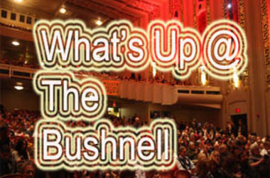 What's up @the bushnell