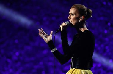 Celine Dion performs onstage