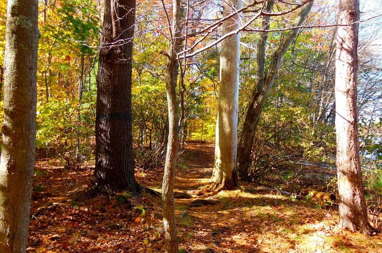 Autumn hiking trails