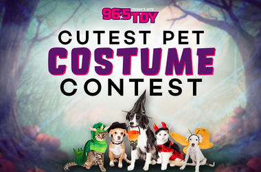 96.5 TDY's Cutest Pet Costume Contest Halloween Spooky Enter