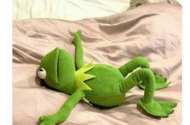 Kermit exhausted