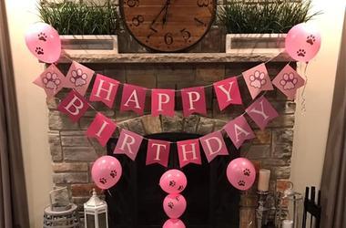 Jameson Birthday