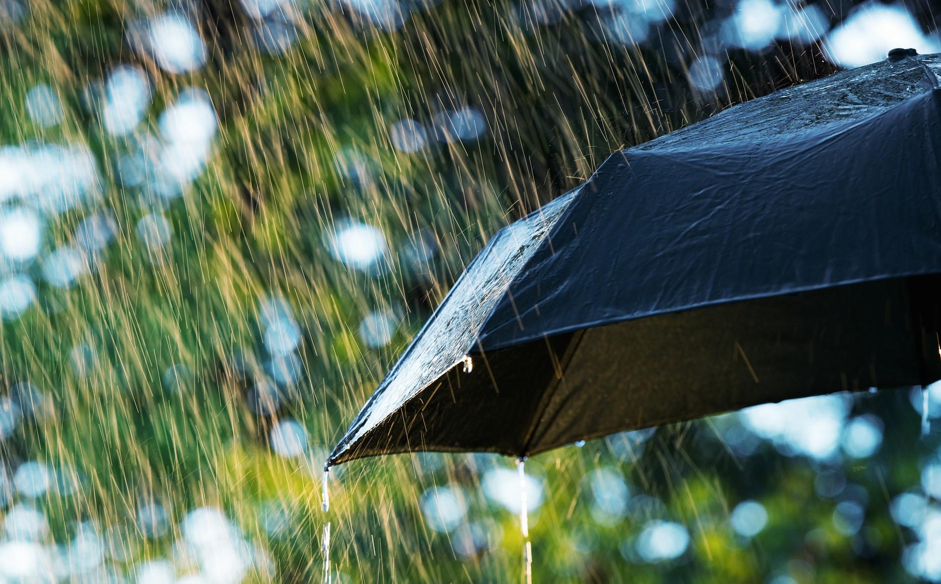 Farmers' Almanac Predicts Stormy, Mild Temperature Summer In