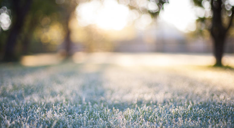 Southeast Michigan Under Frost Advisory Overnight Into Tuesday Morning