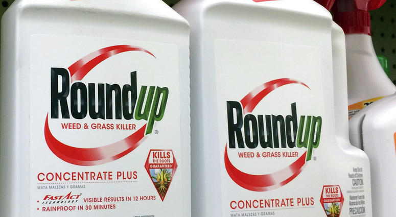 Roundup, a weed killer made by Monsanto - AP