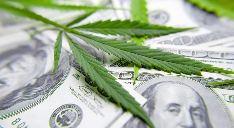 marijuana business