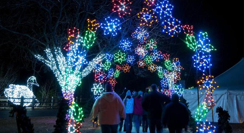 Detroit Zoo Christmas Lights.Tickets Now On Sale For Detroit Zoo S 2018 Wild Lights