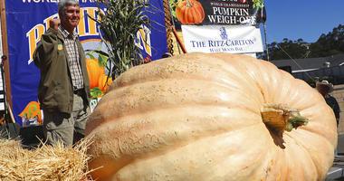 massive pumpkin AP