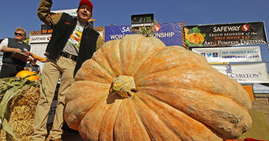 Giant Pumpkin Winner