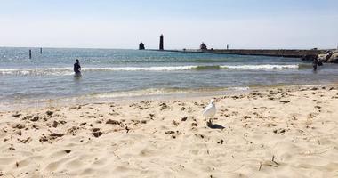 Lake Michigan - Grand Haven State Park Beach