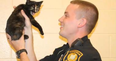 Livonia police kitten rescue