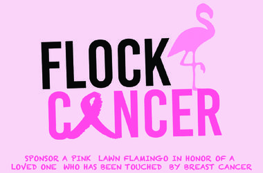 Flock Cancer 2019