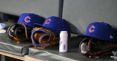 Iowa Cubs, Tiny House