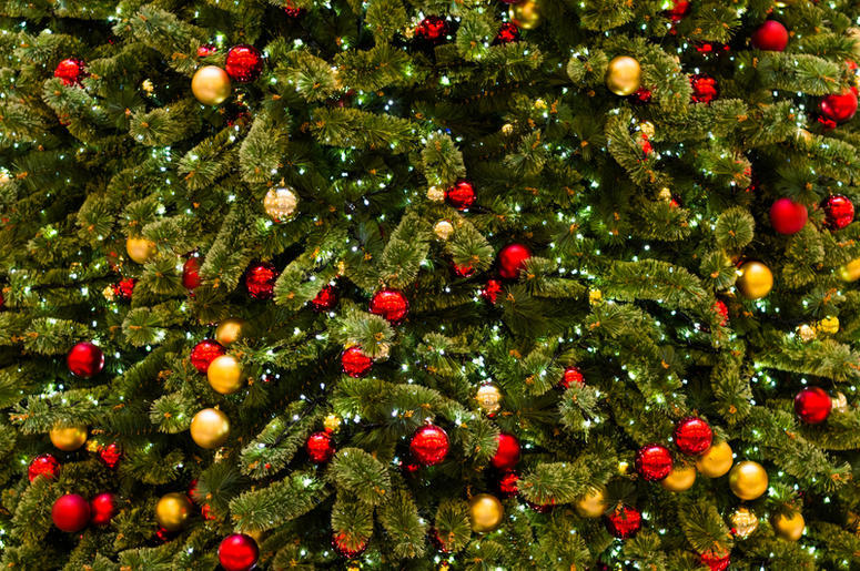 British Grocery Store Selling Christmas Tree Chips 99 5 Wycd