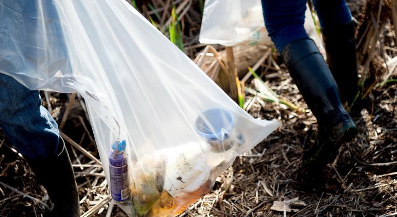 people removing litter trash
